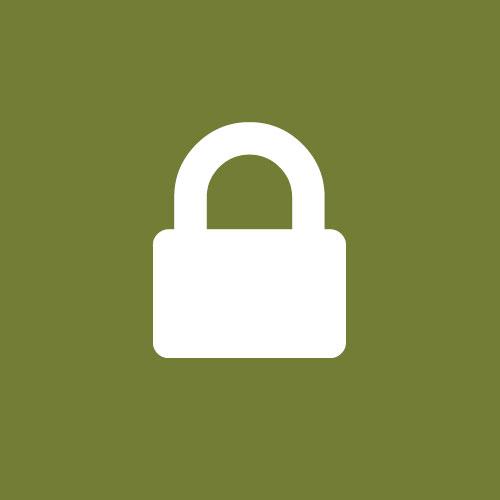 Icon sicher online buchen